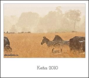 kena2010