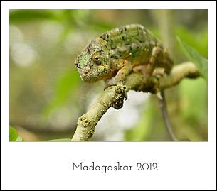 madagaskar2012